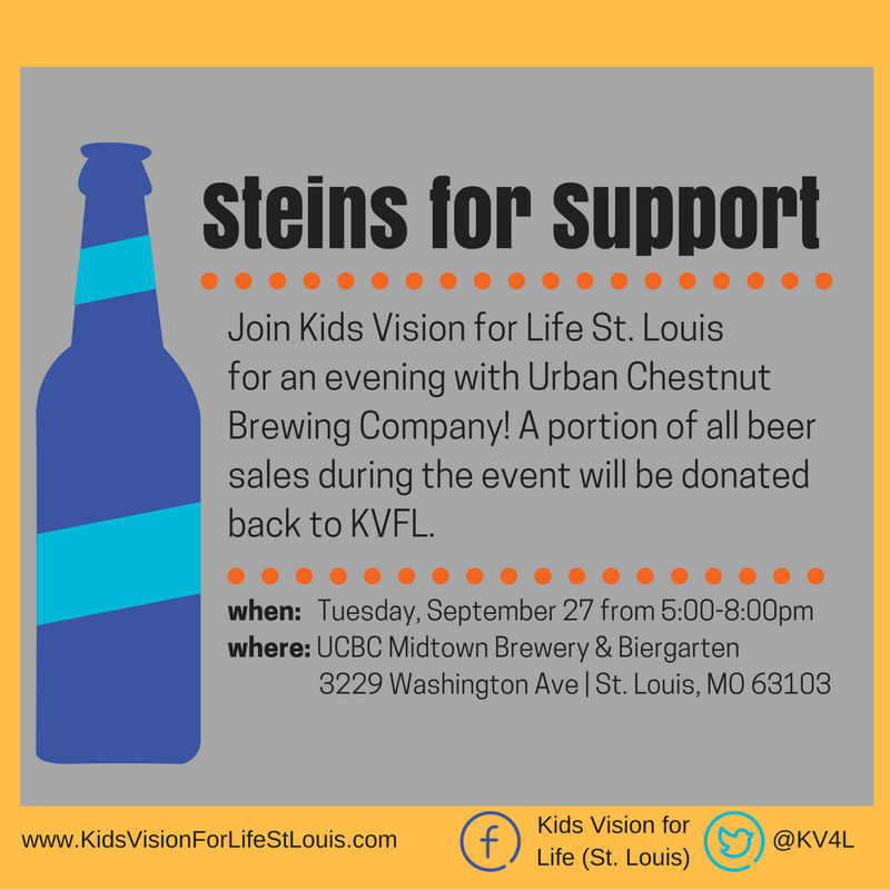 steins-for-support